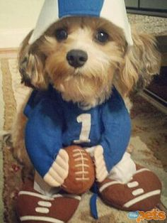 Are you ready for some football?!? Chauncey sure was. Even if watching it meant sitting in these crazy clothes. So Cute!
