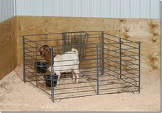stand-alone pen for lambing