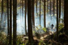 MTB Rotorua, New Zealand Please follow us @ https://www.pinterest.com/wocycling/