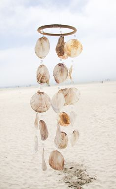 """Inspo from our friends! """"One cannot collect all the beautiful shells on the beach. One can only collect a few. One moon shell is more impressive than three."""" ― Anne Morrow Lindbergh, Gift from t Seashell Wind Chimes, Seashell Art, Seashell Crafts, Beach Crafts, Shell Decorations, Driftwood Projects, Driftwood Art, Beach Cottages, Sea Shells"""