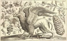 Wenceslaus Hollar (1607–1677)   A griffin.  Unknown date   17 x 28 cm.  Thomas Fisher Rare Book Library