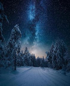 ✨✨Winter ❄️Starry Sky's 🌌 in Norway 🇳🇴✨✨ Milky Way Photography, Landscape Photography Tips, Amazing Photography, Nature Photography, Photography Hacks, Star Photography, Photography Classes, Photography Business, Creative Photography