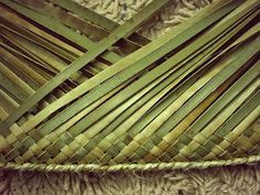 FLAXWEAVING This unique form of the weaving craft was invented by Maori specifically for native flax (harakeke) and is a good represent. Flax Weaving, Weaving Art, New Zealand Flax, Basket Weaving Patterns, Flax Flowers, Coconut Leaves, Maori Designs, Decoration, Weave