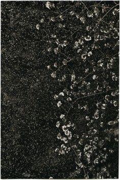 Carbon and Platinum/Palladium print