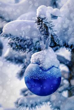 Happy new year friends! By Anatolevich Christmas Feeling, Blue Christmas, Christmas Colors, Beautiful Christmas, Winter Christmas, Christmas Holidays, Christmas Bulbs, Merry Christmas, Christmas Decorations