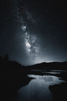 Life Found In Monochrome by Michael Shainblum |...