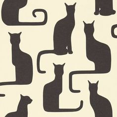 Omega Cats Behang