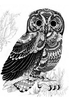 beautiful owl zentangle