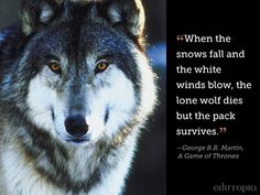 """Learn ways to build your PLN so you're not a """"lone wolf."""""""