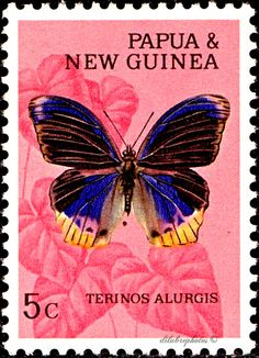 Papua New Guinea.  BUTTERFLIES.  PORT MORESBY TERINOS. Scott 212 A46.  issued 1966 Feb 14, Photo., Perf. 11 1/2 in Granite Paper. 5. /ldb.
