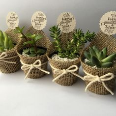 Bridal Shower Table Set Up Mothers New Ideas wedding souvenirs Bridal Shower Table Set Up Mothers New Ideas Wedding Favors And Gifts, Succulent Wedding Favors, Succulent Gifts, Bridal Shower Tables, Bridal Shower Favors, Shower Centerpieces, Bridal Shower Decorations, Decoration Communion, Creation Deco