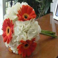 Orange gerber daisy and white hydrangea bouquet.... if the daisys were red or tiffany blue- Emily H.