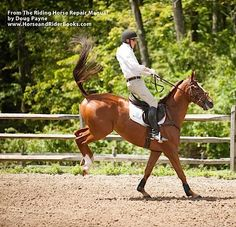 Two simple rules for staying in the saddle when a horse starts bucking.
