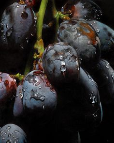 James Neil Hollingsworth - Big Grapes, oil on panel, 16 x 20 inches. Painting Still Life, Still Life Art, Hyperrealistic Art, Hyper Realistic Paintings, Fruit Painting, Grape Painting, Wow Art, Photorealism, Realism Art
