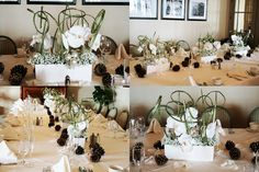 Contemporary Winter Table Arrangements - Orchids and Baby's Breath
