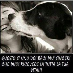 This is gonna be one of the most sincerest kiss you are going to receive in your entire life! Love Your Pet, Love Pet, I Love Dogs, Puppy Love, Cute Dogs, Funny Dogs, Amor Animal, Mundo Animal, All Dogs