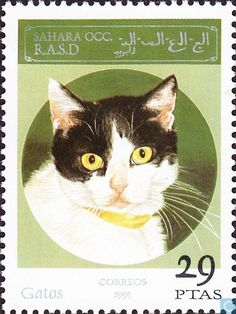 Postage Stamps - Fantasy country - Sahara OCC SADR, Cats