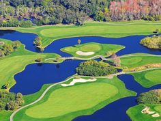 Florida is home to more than golf courses and many great golf resorts. Innisbrook Resort in Palm Harbor is one of the best the state has to offer. Florida Golf, Florida Resorts, Famous Golf Courses, Golf Course Reviews, St Pete Beach, Great Hotel, Water Slides, Beach Walk, Resort Spa