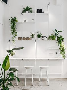 Törnqvist is a Hamburg-based specialty café offering three drinks and interior focused on interaction between barista and guest. Cafe Shop Design, Coffee Shop Interior Design, Japanese Interior Design, Coffee Design, Design Café, Design Blog, Design Studio, White Cafe, Shop Interiors