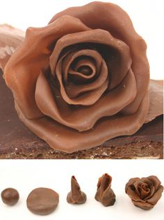 Chocolate roses...the perfect combination!