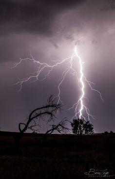 Lightning Strikes by Bonny Fleming