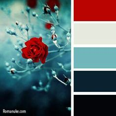 Items similar to Sale! Red Calla Lily Teal Delphinium Feather Boutonniere - Red Teal Black - Wedding, Vow Renewal, Prom, Homecoming, Bar Mitzvah on Etsy - bedroom color schemes Colour Pallette, Color Palate, Colour Schemes, Color Combos, Combination Colors, Silver Color Palette, Beautiful Color Combinations, Red And Teal, Aqua Blue