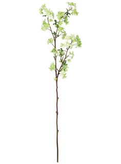 Artificial Apple Blossom Spray in Two Tone Mint Green - 52in. Tall