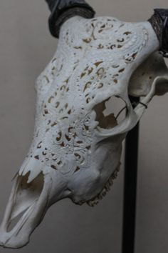 Beautiful Hand Carved Steer/ Cow Skull by AntiqueArtCollection, $399.99