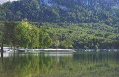 Stock Photo of Forest, Lake and Mountains. Free stock image of nature. Free Stock Photos, Free Photos, My Photos, Lake Mountain, Spring Nature, Nature Images, Royalty Free Images, Mountains, Water