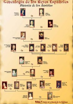 Genealogy of the Austrians, spanish royal dynasty preceding the Borbons, current… Spain History, World History, Family History, Genealogy Chart, Genealogy Research, Family Genealogy, Royal Family Trees, Royal House, Teaching Spanish