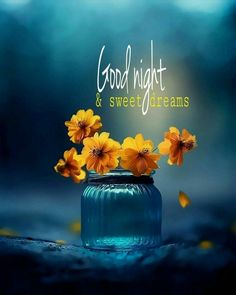 """Good Night Quotes and Good Night Images Good night blessings """"Good night, good night! Parting is such sweet sorrow, that I shall say good night till it is tomorrow."""" Amazing Good Night Love Quotes & Sayings Good Night Quotes Images, Good Night Love Images, Good Night Gif, Good Night Messages, Night Pictures, Good Night Image, Afternoon Messages, Pictures Images, Good Night Friends"""
