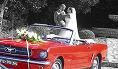 Casamento Carminda e Gil #Fotografia #lowcost #fotografialowcost #fotografiacasamentosPaparazi