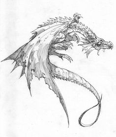 This is a good start to the body of the dragon tattoo i would like! i would change some things around but for the most part its a great start