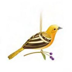 QXE3107 Lady Oriole The Beauty of Birds 2011 Special Edition Hallmark Ornament Hallmark http://www.amazon.com/dp/B0055PEXBC/ref=cm_sw_r_pi_dp_UgOaub0EN2DQ0