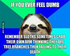 Feeling dumb?