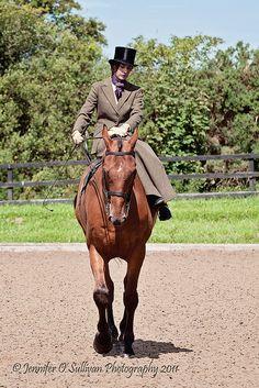 Side Saddle   by Jennifer O'Sullivan Photography