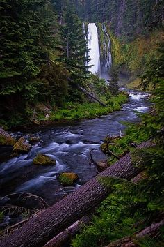 Lemolo Falls, North Umpqua River near Idleyld Park, Oregon
