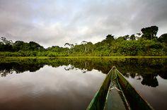 kapawi river, southern ecuador