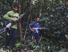 A presença do Sendero Luminoso limita-se aos vales dos rios Apurímac e Ene (VRAE), onde a complexa geografia da selva oferece amplas oportunidades de emboscar patrulhas militares e policiais, segundo o parlamentar Carlos Tubino Arias Schreiber. (Diario El Comercio/Reuters)