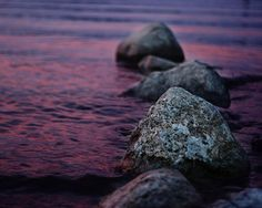 plum the depths