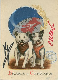 USSR Space Dogs