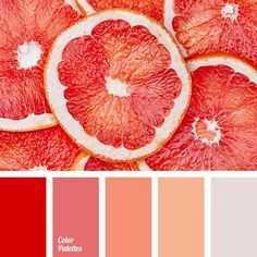 Stunning color pallette with a red inspiration #reddesign #creativedesign #colordesign Find more inspirations at www.circu.net