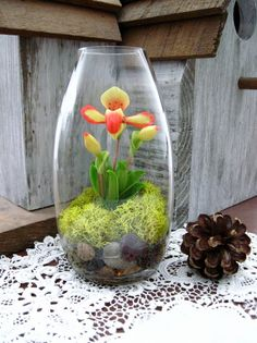 Woodland Orchid Terrarium by DoodleBirdie on Etsy