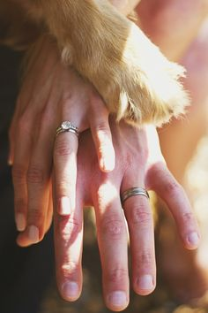 Dog Lovers Engagement Session in the woods and at the beach #dog #doglovers #nature www.studiosequoia.com
