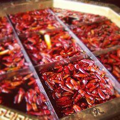 Sichuan hotpot, signature Chongqing 九格火锅, super spicy!