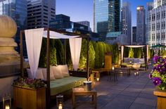 Rooftop Lounge in New York City at the Roosevelt Hotel lounges