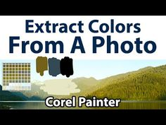 How to extract a color palette from a photo with Corel Painter.