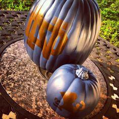 Made these Irish pumpkins today. Go Irish! Nd Football, Notre Dame Football, Go Irish, Irish Art, Holiday Fun, Holiday Ideas, Fighting Irish, Buffalo Bills, Fall Decorations