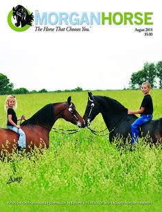 the morgan horse magazine | The Morgan Horse magazine Covers