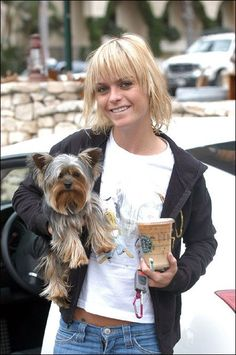 14 Yorkies That Have Famous Owners Yorkies, Yorkie Puppy, Baby Yorkie, Yorkshire Terrier Haircut, Yorkshire Terrier Puppies, Yorkie Haircuts, Girl Haircuts, Taryn Manning, Dog Best Friend
